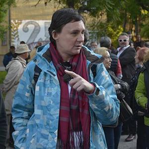 Соња Стојадиновиќ - политиколог